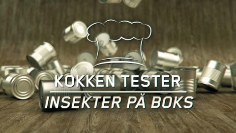 Kokken tester: Insekter på boks